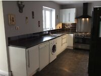 Ikea kitchen for sale, including sink, taps, drainage, and Zanussi dishwasher if required