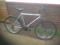 Adults Muddyfox Mountain Bike 18 sp