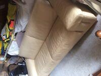 Natzuzzi leather sofa