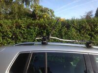 Thule bike rack - roof mounted