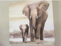 Canvas picture safari/jungle style Mother and baby Elephant size 19x19 inches New