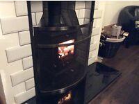 Fire SCREEN for open fire / wood burner