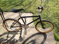 Raleigh Bmx with gears