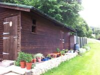 Large T&G Garden Shed Workshop Garage Outbuilding 24 foot x 12 foot Pre Fab - Nr Oswestry
