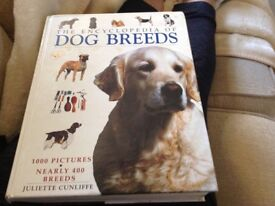 The encyclopaedia of dog breeds