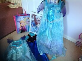 Frozen outfits Elsa and Anna , Bag, Picture and Wand 3/4 yrs plus