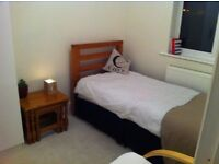 Single room to let / House share M26