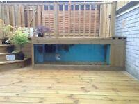 Fish tank 6 ft