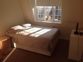 MARVELOUS DOUBLE ROOM IN ACTON TOWN PICCADILLY LINE