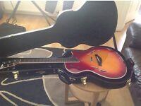 Taylor t 5 guitar