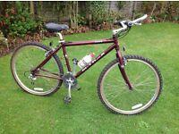 Raleigh M-Trax retro mountain bikes.