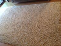 Large cream rug