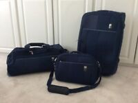 Attractive Antler Luggage Set