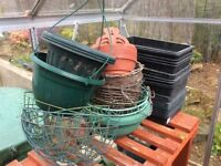 Seed trays ,pots and containers