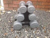 Pro fitness dumbbell tree set