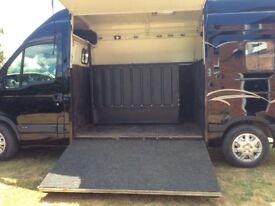 Renault master horse Box