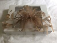 Champagne feather and crystal comb fascinator