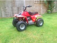 Quad bike off road 50cc dirt bike farm quad kids quadbike field bike petrol not 125cc 100cc 150cc