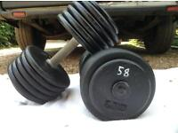 2 x 58kg Cast Iron Dumbbell Weights