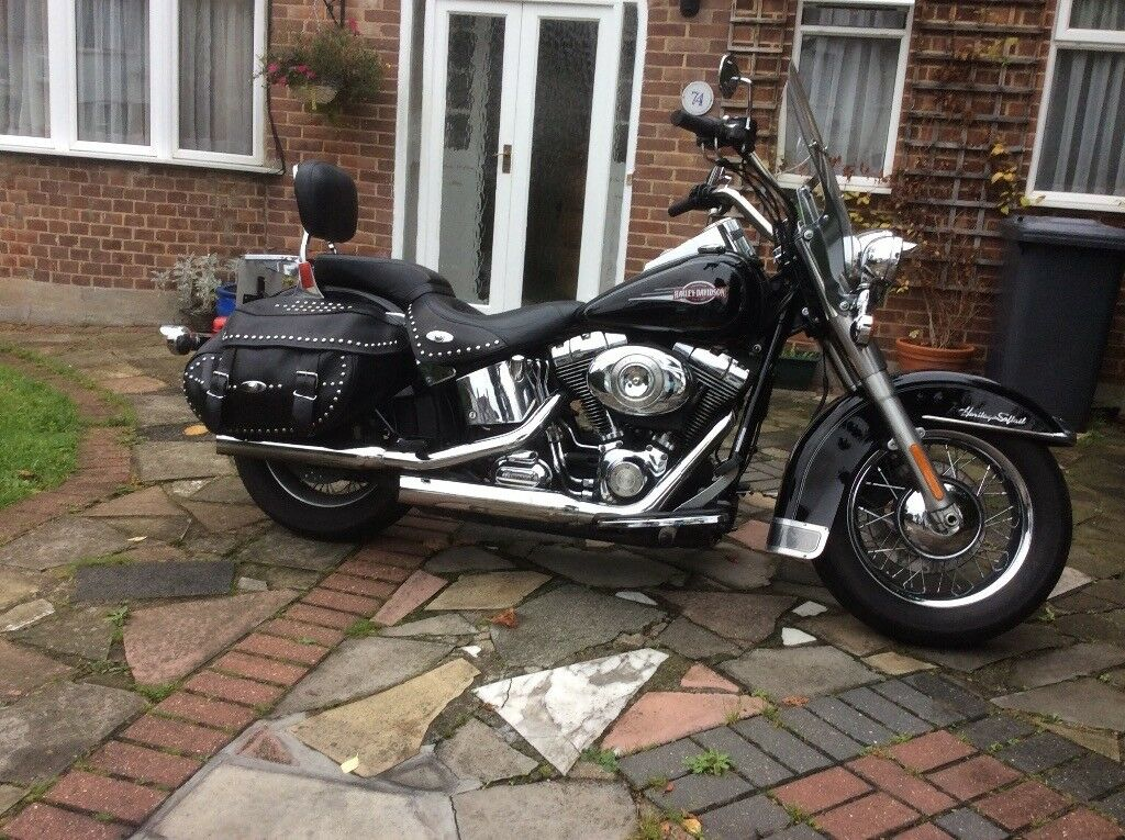 harley Dqvidson Soft tail very good conditionn stored in Garage one owner