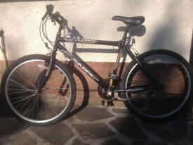 Male adult mountain bike for sale . Few rusty areas, gear needs tunning otherwise in good condition.