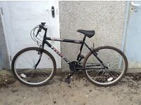 Second hand male adult mountain bike