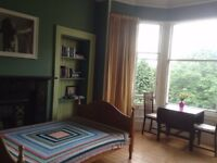 Double Room in Bruntsfield - short term