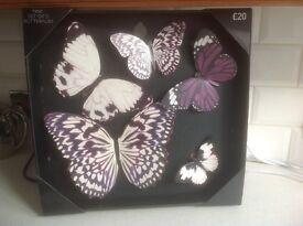 Next, purple butterflies wall decoration