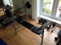 Pro Fitness Work Bench
