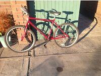 Boys Raleigh Endurance Bike (Burgundy) as new unused,suit 12 - 16 yr old. £55, phone 07973789917