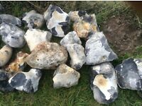 Large cleaned quarried Flint . Ideal for garden projects. 150mm +. £2.00 each.