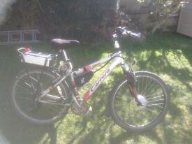 light weight elec mountain bike