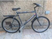 RALEIGH MANS BIKE FOR SALE-EXCELLENT CONDITION-FREE DELIVERY