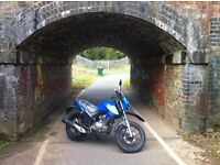 Feb SALE Lexmoto Assault 125cc ,Commuter/Touring Blue in stock now £1200 + otr FINANCE AVAILABLE