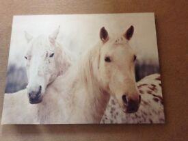 Next horse canvas