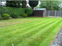 Turf Laying Service from only £18 per m²! Anywhere in London!