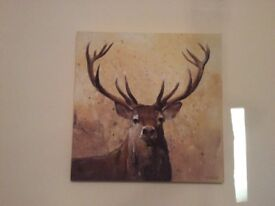 Canvas Stag picture