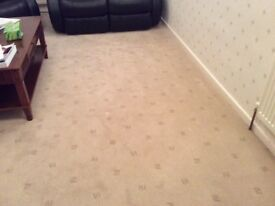LARGER than Average Used Living Room Carpet