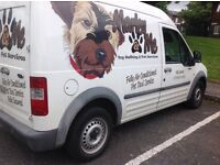 Dog Van, Clean and Tidy.....SOLD