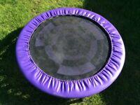 Small purple and black trampoline