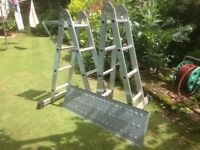 Adjustable folding ladder with two steel platform panels and a work tray for paint pots/tools etc.
