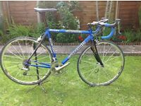 Guerciott Piranha Dedaccia Bike