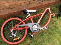 Ammaco Trailer bike