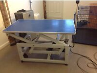 Large electric dog grooming table