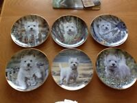 Danbury Mint - Westies collectible plates