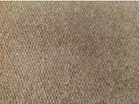 Carpet - Berber 100% New Zealand wool- colour Kenya