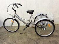 Adult trike. { listed in bike }