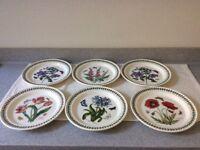 Portmeirion Botanic Garden 6 x Dinner Plates Asstd Designs, all excellent condition, some Unused