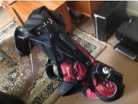 Inesis Golf Bag