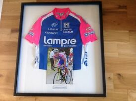 Damiano Cunego signed cycling jersey